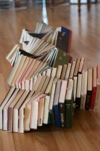 BookSnakebyAlanLevineFlickr